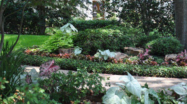 Dallas Landscapers - Impact Landscapes LLC - 972-849-6443