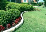 Tips To Save Time on Lawn Care