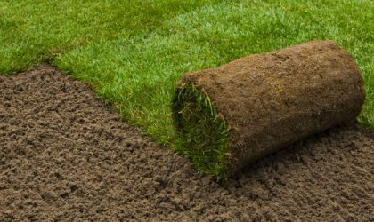 Sod Installation | Impact Landscapes LLC | 972-849-6443