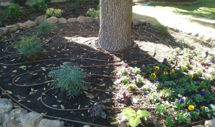Dallas Irrigation Services by Impact Landscapes LLC. Call now 972-849-6443