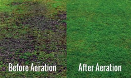 4 Questions Answered About Aeration - Impact Landscapes LLC - 972-849-6443